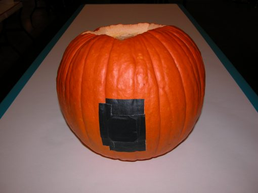 #1072 Pumpkin #4 / Audi job #2