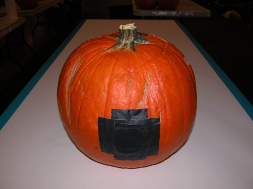 #1079 Pumpkin #11 / Audi job #9
