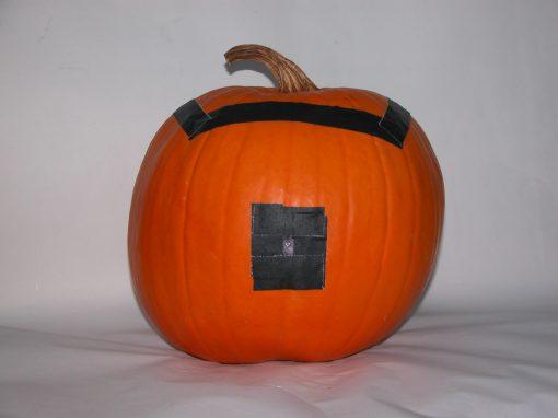 #1094 Pumpkin #26