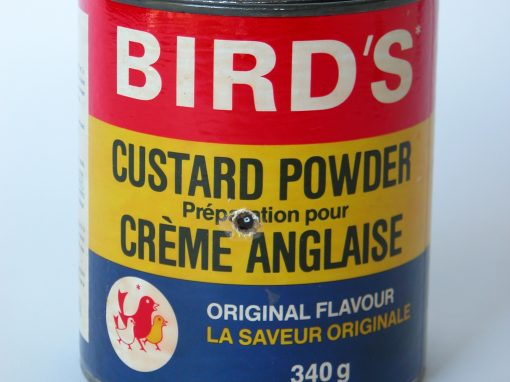#413 BIRD'S Custard Pudding