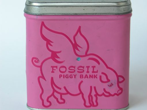 #510 Fossil Piggy Bank