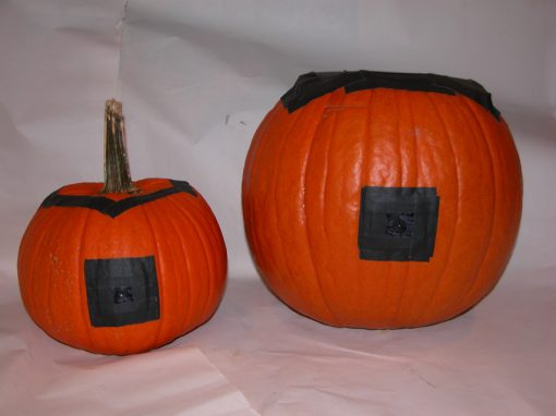 #1070 Pumpkin #1 & #2 / Honda (test)
