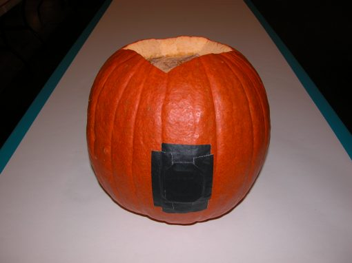 #1073 Pumpkin #5 / Audi job #3