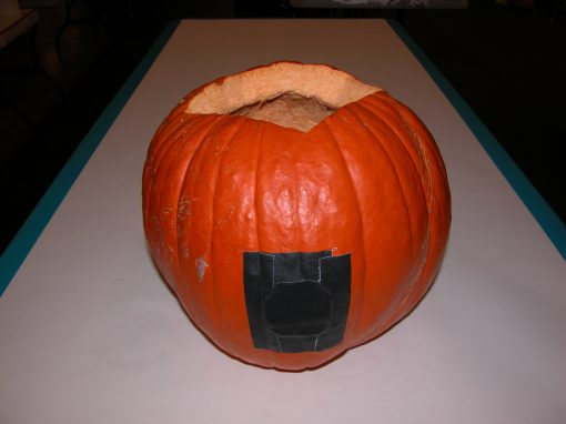 #1074 Pumpkin #6 / Audi job #4