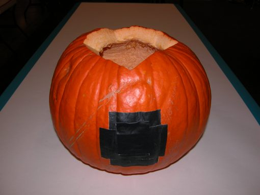 #1076 Pumpkin #8 / Audi job #6