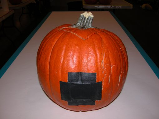 #1077 Pumpkin #9 / Audi job #7