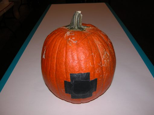 #1078 Pumpkin #10 / Audi job #8