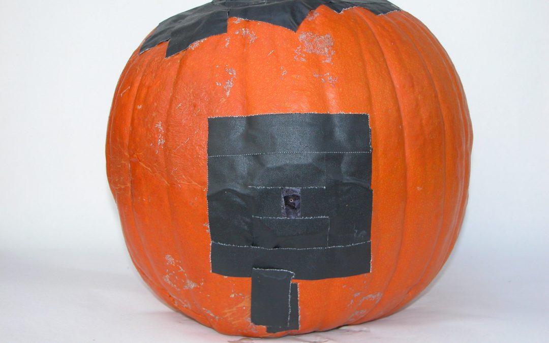 #1091 Pumpkin #23