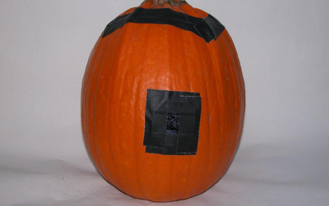 #1092 Pumpkin #24