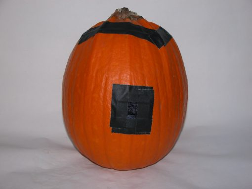 #1092 Pumpkin #24