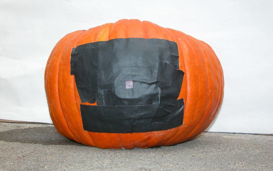 #1095 Pumpkin #27 / preparing pumpkins #1
