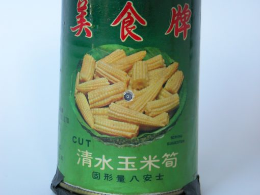 #163 Tasty Young Corn (w/Chinese characters) / Self Portrait