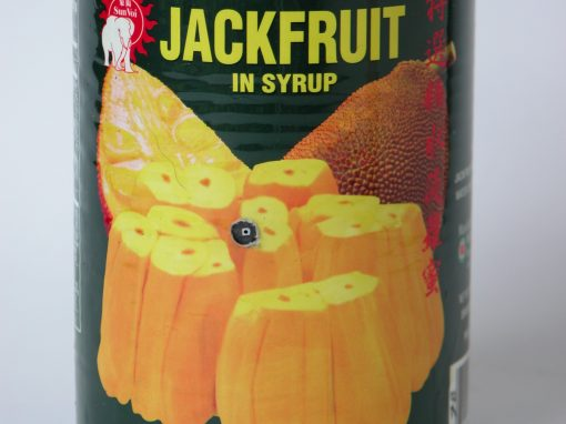 #669 JACKFRUIT in Syrup